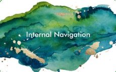 Internal Navigation